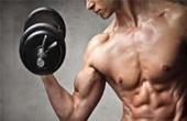 Гонадотропин — незаменимый помощник при наращивании мышечной массы