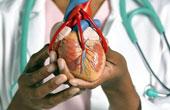 Нормальная работа сердца и отклонения от нормы