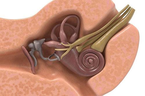 Что такое вестибулярная мигрень?