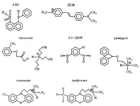 Структурные формулы зондов АНС, ДМС и некоторых заряженных ксенобиотиков