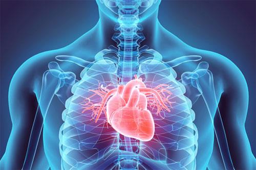 Разделение сердечных заболеваний
