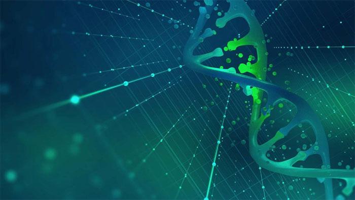 Генетический анализ для похудения — что это?