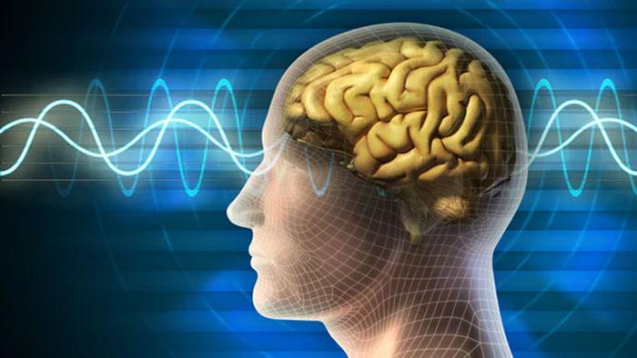 Наш мозг зависим от информации?